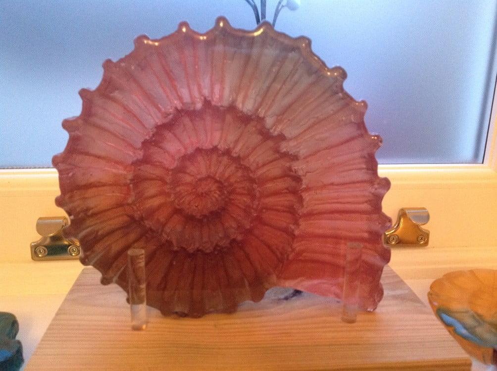 Dichroic Ammonite